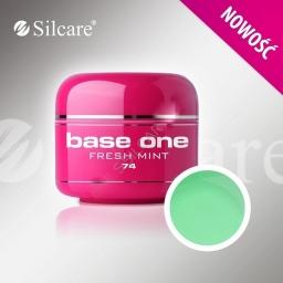 Base One Color Gel  Fresh Mint 5 g