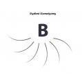 Rzęsy Jedwabne  Profil B. Grubość 0,20. Długość 14 mm. Blink Lash Stylist & Care.