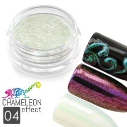 04 Chameleon Effect