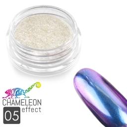 05 Chameleon Effect