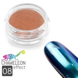 08 Chameleon Effect