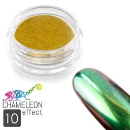 10 Chameleon Effect
