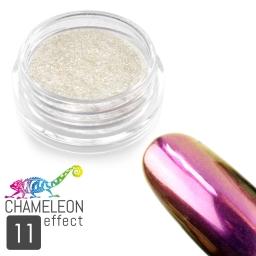 11 Chameleon Effect