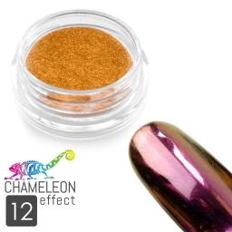 12 Chameleon Effect