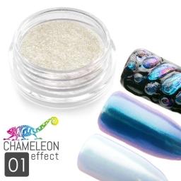 01 Chameleon Effect