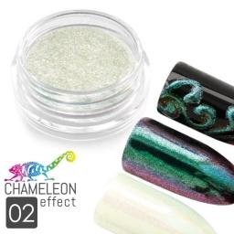 02 Chameleon Effect
