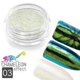 03 Chameleon Effect