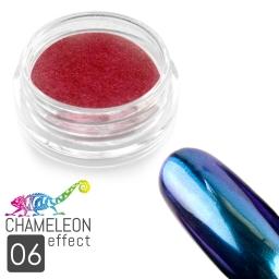 06 Chameleon Effect