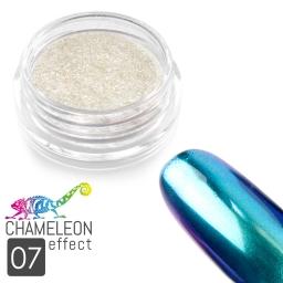 07 Chameleon Effect