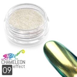 09 Chameleon Effect