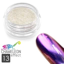 13 Chameleon Effect