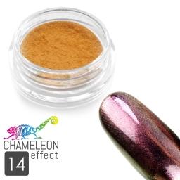 14 Chameleon Effect