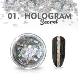 01. HOLOGRAM SECRET