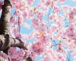 Stylizacje paznokci idealne na wiosnę